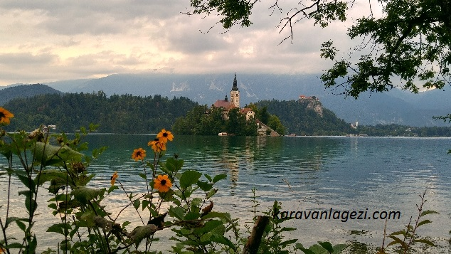 Bled and flowers