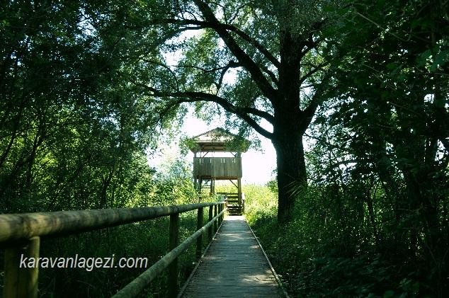 Chiemsee gölü kuş gözetleme kulesi