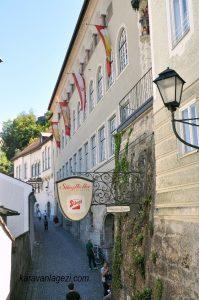 Salzburg kalesi yolundan